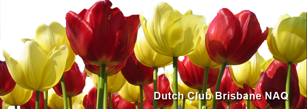 Dutch Club Brisbane NAQ